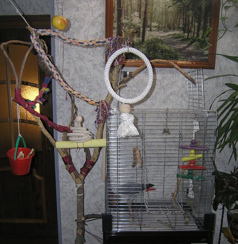 Клетка для попугая какаду
