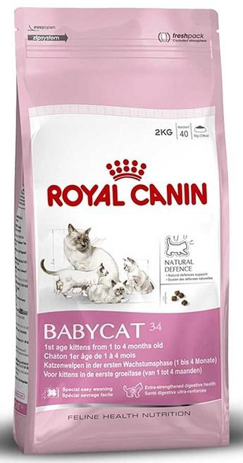 готовые корма для кошек