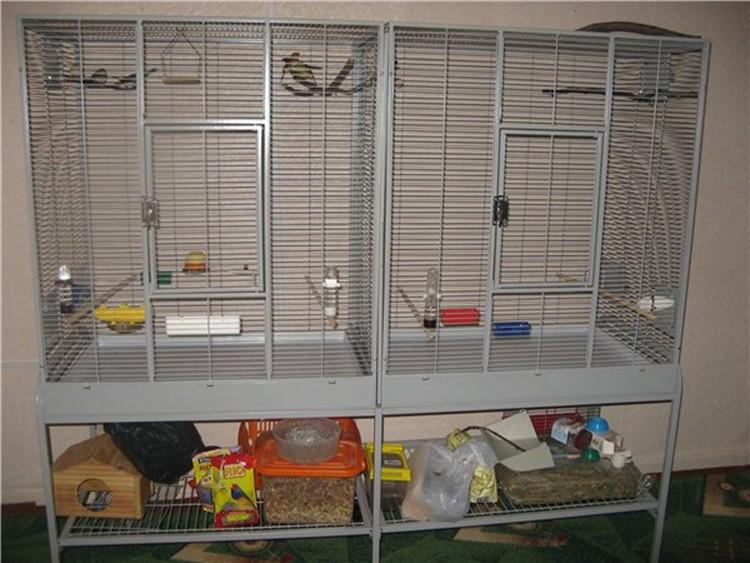 просторное для попугая жилище