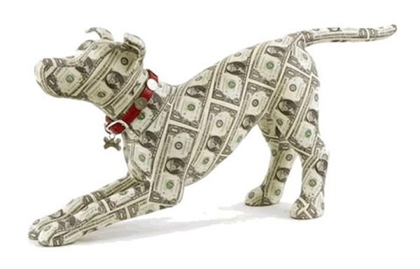 Вынужденный кредит на покупку собаки