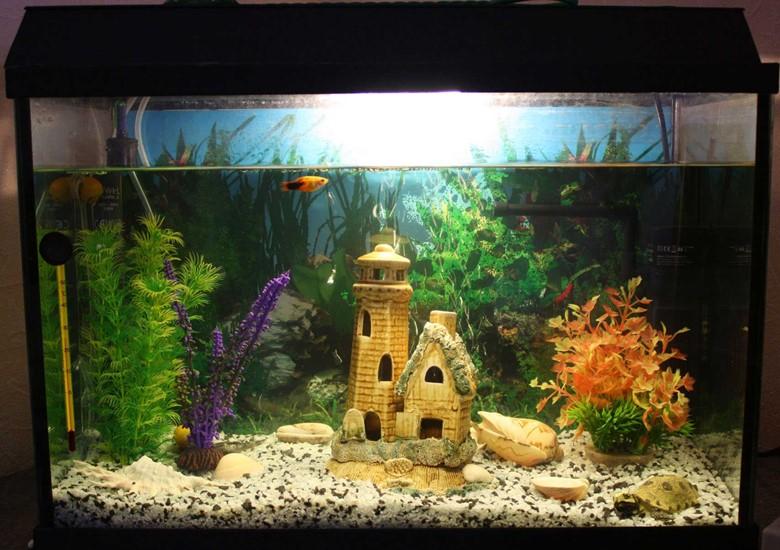 замок на дне аквариума