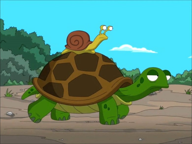 черепаху за границу